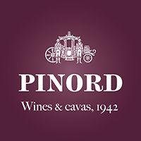 logo pinord web alta ANG